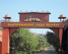 delhi-ranthambore-3-days-tour